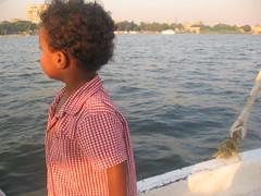 Bug takes in the Nile River