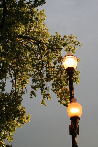 The street lamps outside the gate of the restaurant