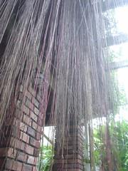 48.山芙蓉咖啡坊_巴里島風格的裝飾