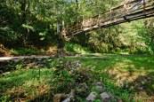 The suspension bridge over the Ravine