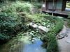 Photo:頼久寺庭園 / Japanese garden at Raiku-ji Temple By