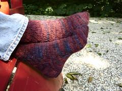 24th Anniversary Socks