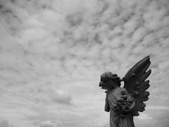 angel with sky