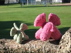 knit elephant bums