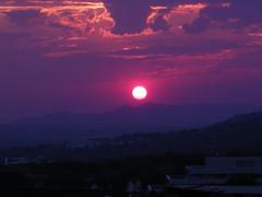 Wire sunset