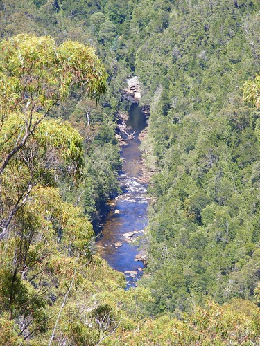 2008_0106australia20353