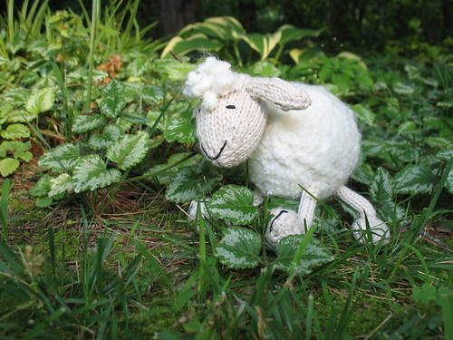 Bub's Fluffy Sheep