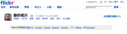 Flickr UI Translated