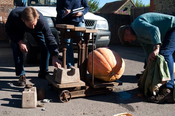 Pumpkin weighing