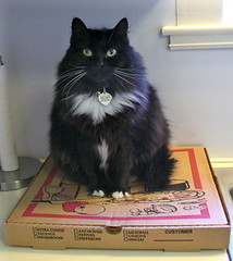 Shadow on pizza box