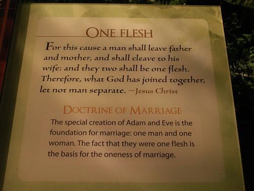 One Flesh