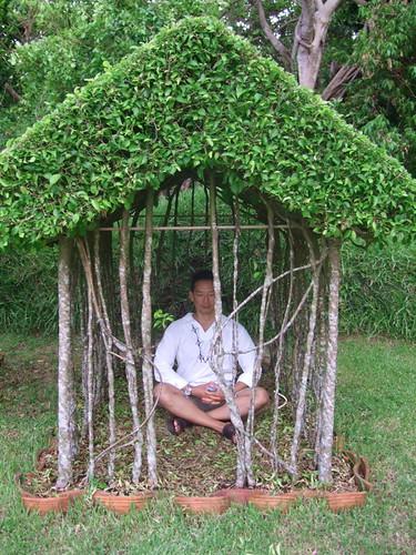 Meditating Wind no. 34