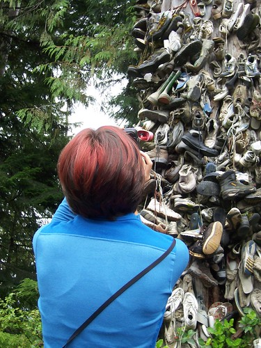 shoe tree, vancouver island