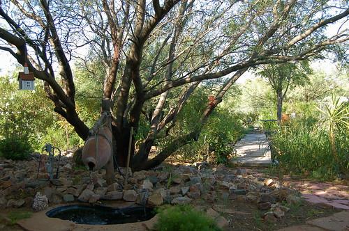 Allen's Front Garden