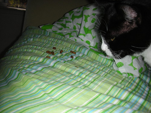 Crunchies in bed!