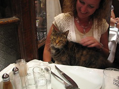 A dinner companion in Istanbul