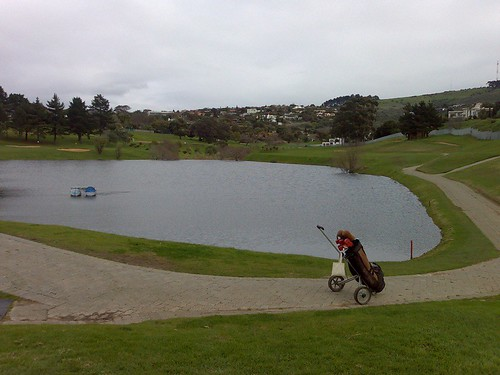 Bellville golf 1