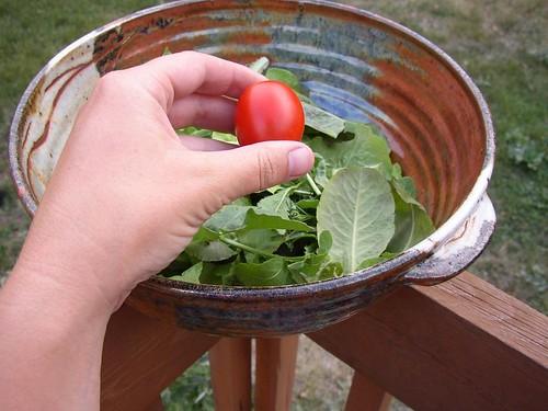Rawr! Giant hand squash tiny tomato!