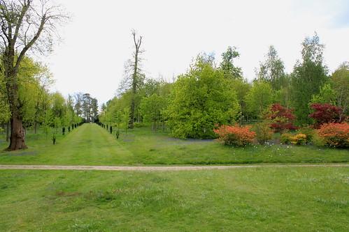 Petworth Estate