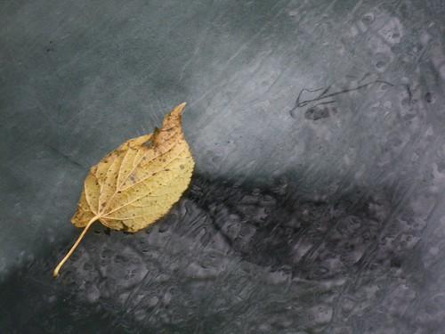 Ancora un altro autunno
