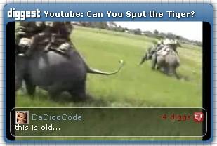 Diggest: Video Widget