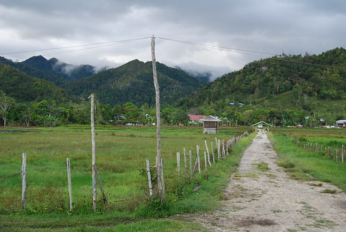 Bario Highlands