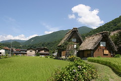 白川鄉的合掌村/Shirakawa-Village