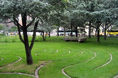 NYC - Battery Park: Jerusalem Grove and Batter...