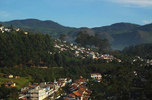 Wellington town