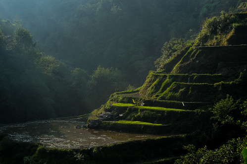 First light. Banaue viewpoint
