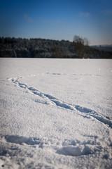 Winter rund um die Ködeltalsperre-6