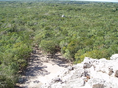 2005 01 22 3 Coba view from pyramid