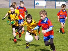 088 Loughmacrory at U8 Football Blitz Apr2016
