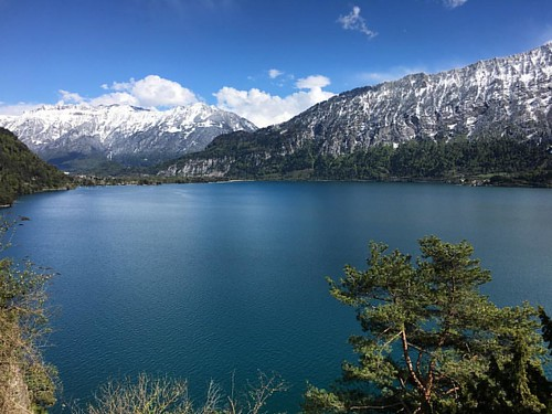 #ThunerSee @ #Interlaken #Beatenberg #Schweiz #Alpen #traveloup