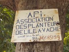 Association des planteurs