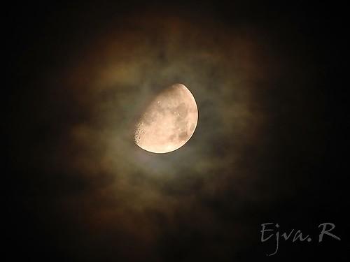 A Hold és udvara