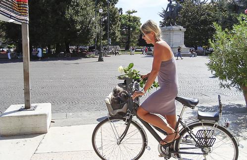 Bicicletas - de Fernando Álvarez