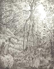 Raggi di sole tra le foglie, acquaforte e acquatinta, 2006