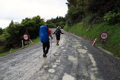 On the official Te Araroa Trail. The trail's still a work in progress...