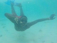 Fednol sous l'eau