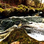 "Water flows in the creek. #water #creek #iphone5s #awesomepicture #gnesta #picoftheday #photooftheday #filter #spring #navår #sörmland #södermanland <a style=""margin-left:10px; font-size:0.8em;"" href=""http://www.flickr.com/photos/131645797@N05/26131809575/"" target=""_blank"">@flickr</a>"