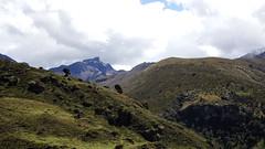 Peñas del Caracolí