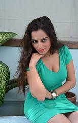 Bollywood Actress Meghna Patel Photos Set-4-HOT PHOTOS (13)