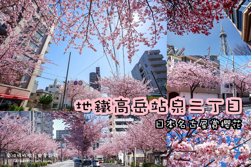 日本名古屋賞櫻