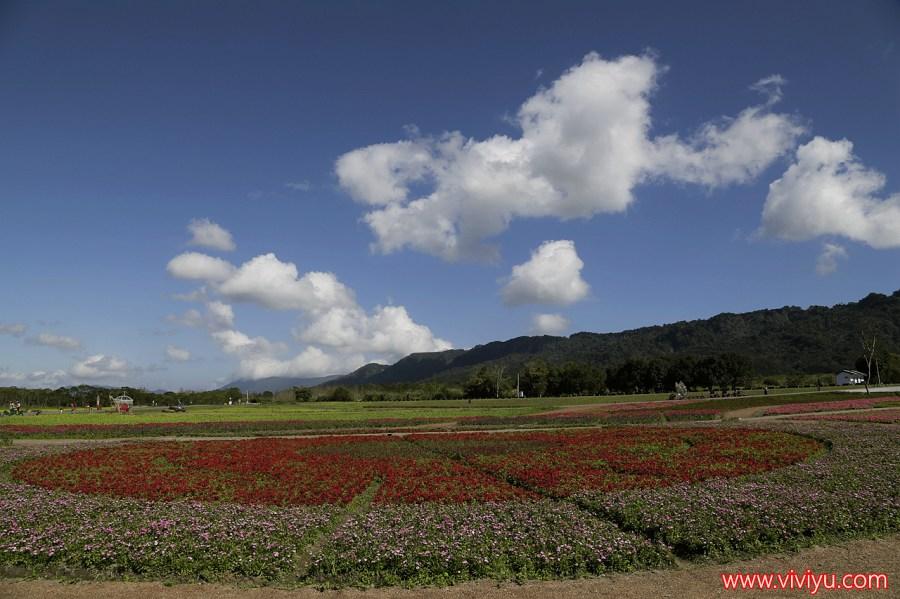 光復景點,大農大富,腳踏車車道,花蓮,花蓮旅遊,花蓮景點 @VIVIYU小世界
