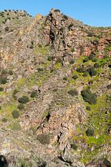 Aspectos da geologia