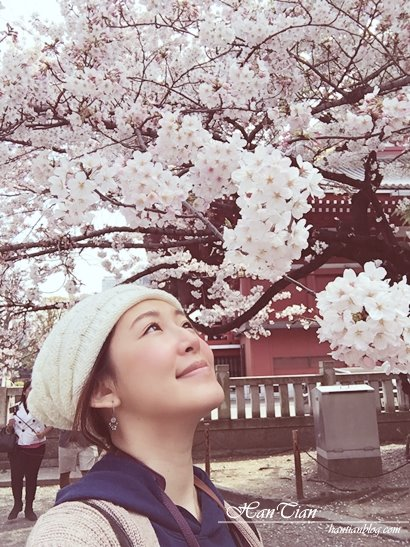 【東京賞櫻】淺草寺櫻花 和服體驗拍照最佳景點 – 涵天食尚玩樂生活誌