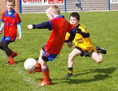 101 Loughmacrory at U8 Football Blitz Apr2016