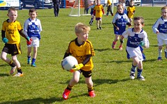 041 Loughmacrory at U8 Football Blitz Apr2016