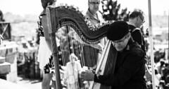 """Die Harfe. Die Harfen. Der Mann spielt Harfe. • <a style=""""font-size:0.8em;"""" href=""""http://www.flickr.com/photos/42554185@N00/26347985451/"""" target=""""_blank"""">View on Flickr</a>"""